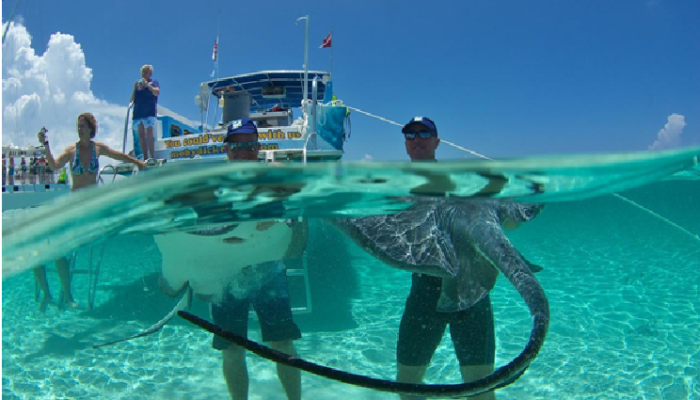 5 Fun Activities in the Cayman Islands